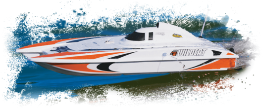 AquaCraft Mini Wildcat Katamaran 2.4GHz RTR Rot